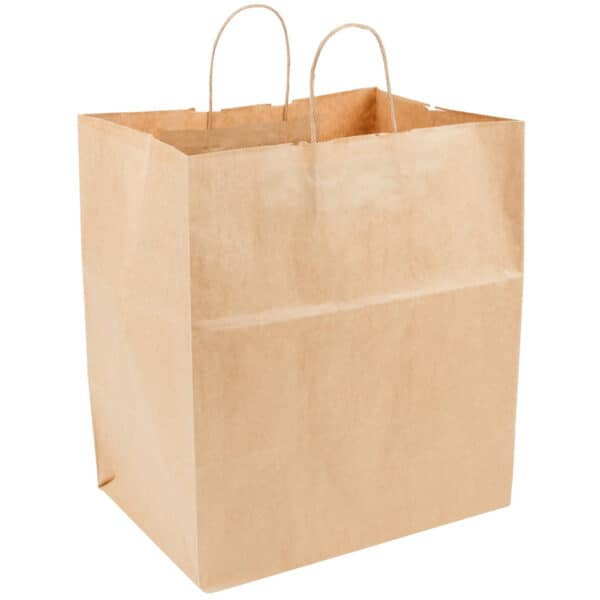 paper rope bag with handles 14X10X16