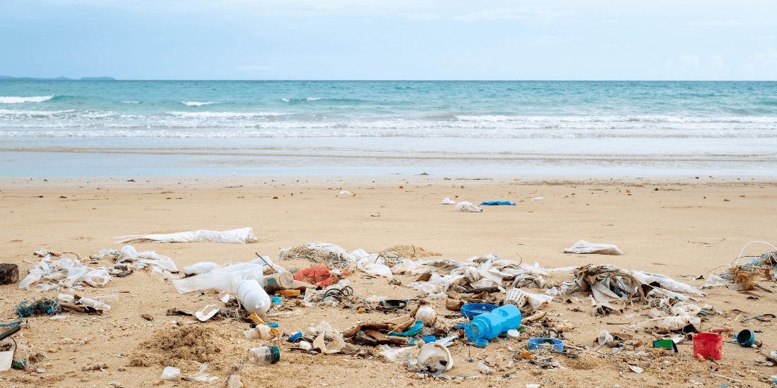 plastic pollution on the beach